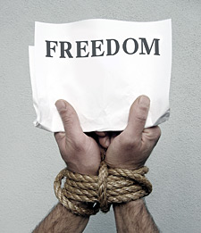 MLM Marketing Freedom