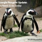 Latest Google Penguin Update: What You Need to do Today