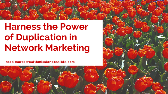 Power of Network Marketing Duplication