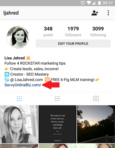 Instagram bio link tip