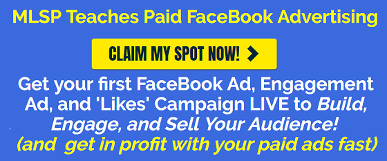 Paid FaceBook Advertising