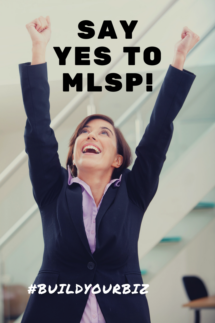 Use MLSP to Build a Successful Online Business