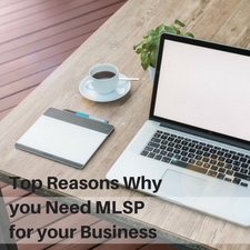 Reasons Why you Need MLSP for your Business
