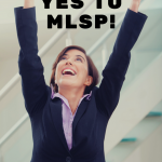 How to Use MLSP to Build a Successful Online Business