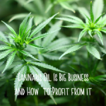 CBD Oil Is Big Business and How to Profit from it